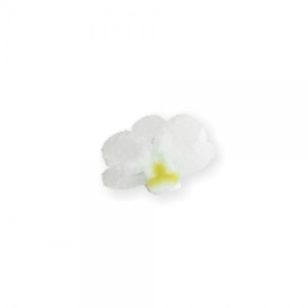 fimo flower, white orchid