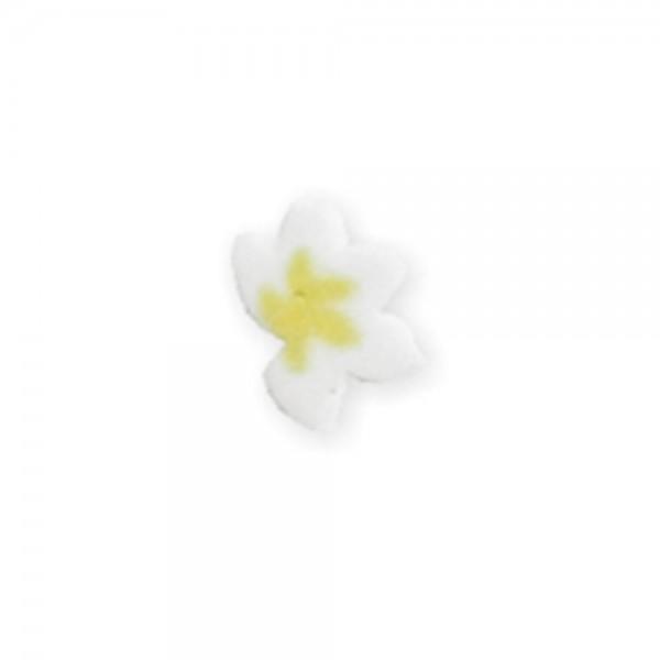 fimo flower, yellow vanilla flower
