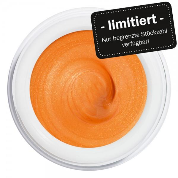artistgel persimmon taste #531, 5g